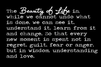 the-beauty-of-life-640x428